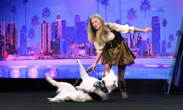 Sara Carson Dog Training