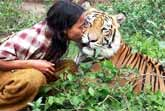 Tiger And Man Are Best Friends